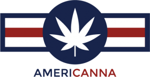 Americanna logo image